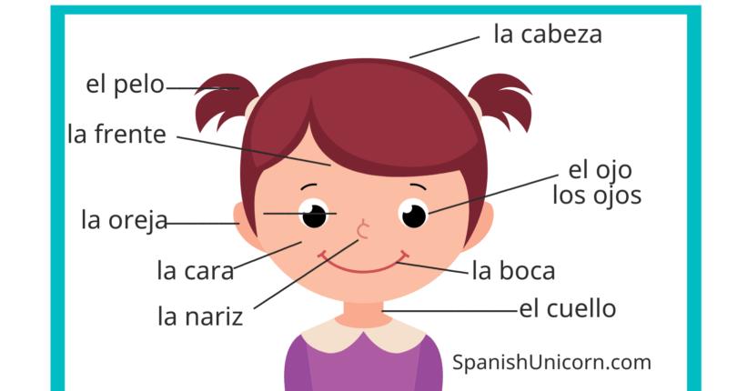 Испанский язык ч.XII — лицо